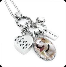 pet urn necklace pet cremation urn necklace memorial for pet loss of pet grief