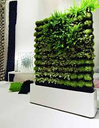 Wall Garden Ideas by Creative Indoor Wall Planters Placement Decor Orchidlagoon Com