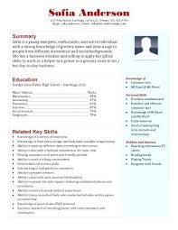 sle resume templates accountants nearby grocery grocery store clerk resume