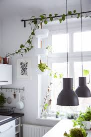 Outdoor Curtains Ikea by Tips For Indoor Plants