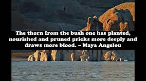 quotes by maya angelou about friendship quotes about family betrayal quotes about betrayal of family and