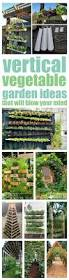 vertical vegetable garden ideas smart money simple life