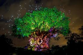 the tree of lights up in special ceremony celebrating pandora