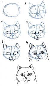 how to draw a cat face how to draw cat facesheads side view