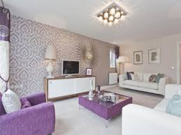 fascinating 60 mauve living room ideas design decoration of best