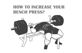muscle palace how to increase your bench press build a bigger