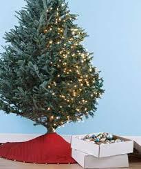 how to hang lights on a christmas tree the art of christmas tree lighting real simple