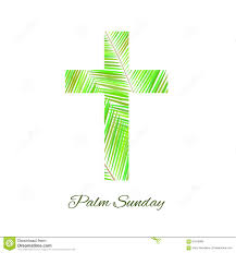 palm crosses for palm sunday easter palm sunday cross isolated royalty free stock photos