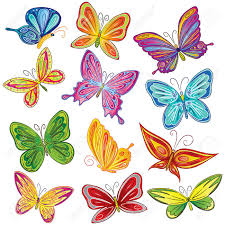 beautiful butterfly set stock photo picture and royalty free