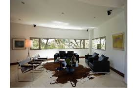 ultimate collection of cowhide rugs