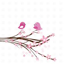 cherry blossom branch with two pink birds royalty free vector