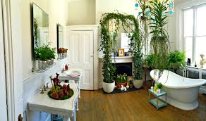 bathroom exquisite awesome stones plants for bathrooms