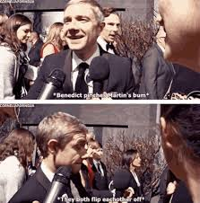 Cumberbatch Otter Meme - martin freeman and benedict cumberbatch