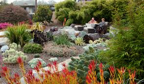 Native Garden Ideas by Inspirations Drought Tolerant Landscaping Ideas Succulent