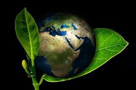 its world earth day express your ideas to make earth a better