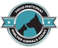 volunteers for animals