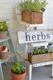 herb garden with vintage boxes