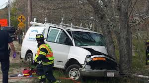 video driver has to be extricated after van vs tree in harwich