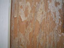 Stain For Fiberglass Exterior Doors A Naive Approach To Refinish Fiberglass Exterior Door