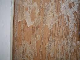 Refinish Exterior Door A Naive Approach To Refinish Fiberglass Exterior Door