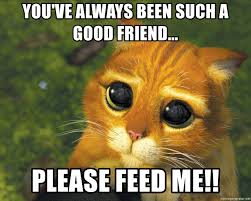 Feed Me Meme - you ve always been such a good friend please feed me puss