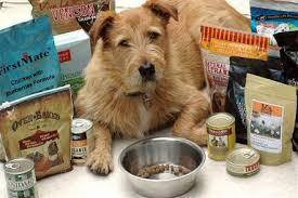 dogaware com commercial dog foods