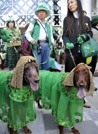 st patrick u0027s day 2014 10 reasons why this is the worst day of the