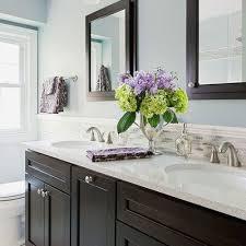 Dark Vanity Bathroom Best Paint Colors For Bathroom Walls New Best Blue Bathroom Paint