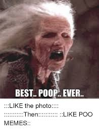 Poo Meme - best poop ever like the photo then like poo memes meme on me me