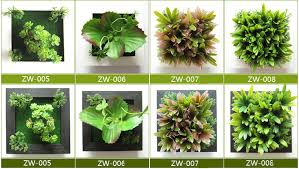 zw007 3d lifelike succulent plants ornamental plants indoor plants