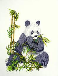 chinese baby panda drawing