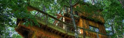 why build a treehouse world treehouses of asheville nc