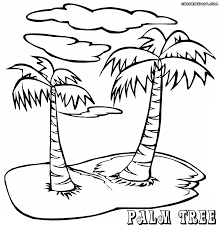 palm tree coloring pages at best all coloring pages tips