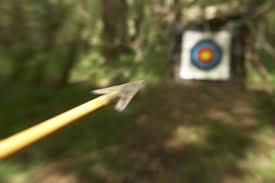 Seeking Bullseye Can You Hit The Bullseye Wonderopolis