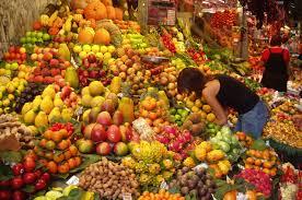 prof spira u0027s mucusless diet food list mucus free life llc