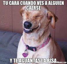 Risa Meme - memes de smile dog galeria 398 imagenes graciosas