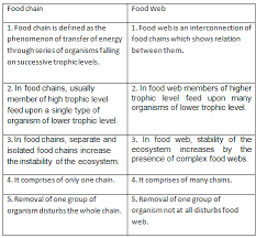 what travels through a food chain or web images Difference between food chain and food web in tabular form png