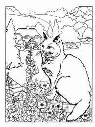 easter coloring page and word search angora cat cornish rex cat