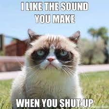 Unamused Cat Meme - viral media licensed for non commercial use only grumpy cat