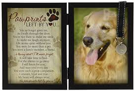 loss of dog coping with the loss of a pet outnumbered 3 to 1
