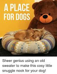 Snuggle Bear Meme - 25 best memes about snuggles snuggles memes