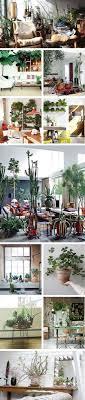chambre de commerce nantes plante d interieur pour chambre de commerce nantes nouveau cci