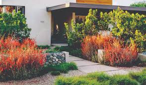 Drought Friendly Landscaping by Color Your World With Drought Friendly Landscaping