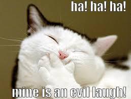 Meme Evil Laugh - evil laugh cat sam flickr