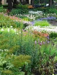 perennial flower bed layouts photos of full sun perennial flower