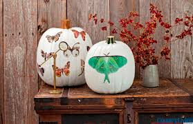halloween decorations moth decal pumpkins from country living