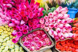Flower Garden Hanoi by Hanoi Flower Market 5 Am Wake Up Call Sunkissed Suitcase