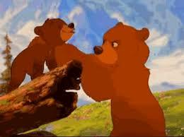 brother bear gif u0026 share giphy