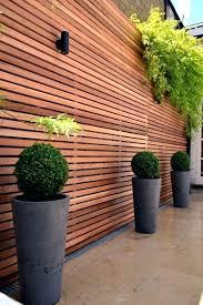 Backyard Ideas For Privacy Best Garden Screening For Privacy Backyard Privacy Screens