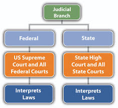 2 2 the branches of government criminal law